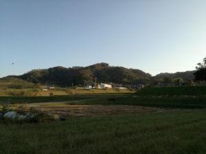 穂谷の里山