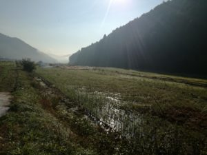 丹波の里山