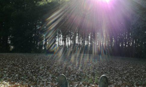 小川町の林で休憩