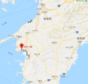 愛媛県/西予市/明浜町/無茶茶園