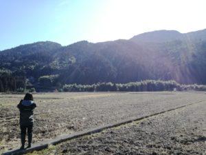 山下農園の圃場