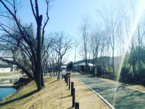 栃本親水公園@小川町