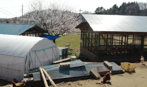 埼玉県 小川町 ぶくぶく農園さん