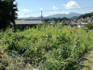 初めて借りた耕作放棄地の農地