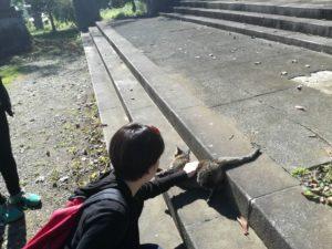 猫@小川町