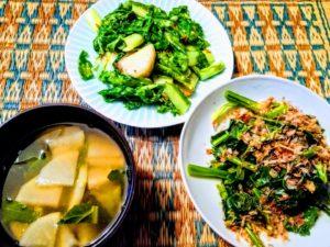 自分で作った野菜の料理