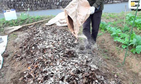 落ち葉堆肥